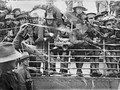 Yüzyıla damga vuran savaş fotoğrafları