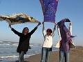 İranlı kadınlardan başörtüsü protestosu