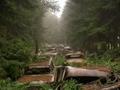 70 yıldır bitmeyen trafik