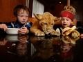 Yemeklerini birlikte yiyorlar